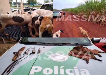 POLÍCIA MILITAR AMBIENTAL PRENDE DOIS DO IRAPÉ CAÇANDO CAPIVARAS.