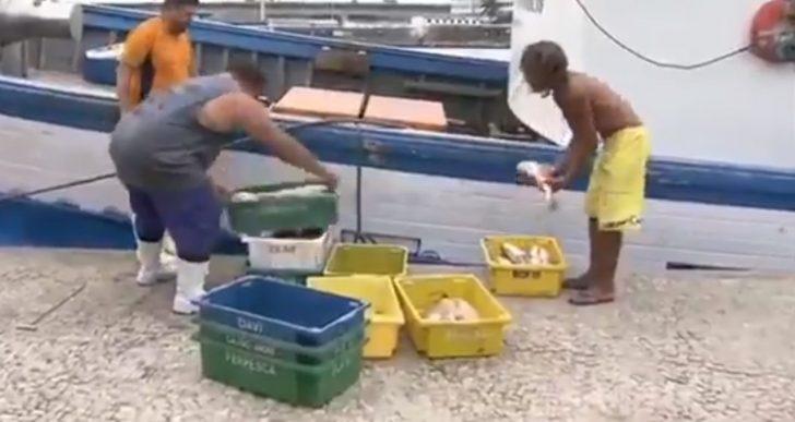 PESCADORES ARTESANAIS NÃO EM ATIVIDADES PODERÃO PERDER O BENEFÍCIO SEGURO DEFESO
