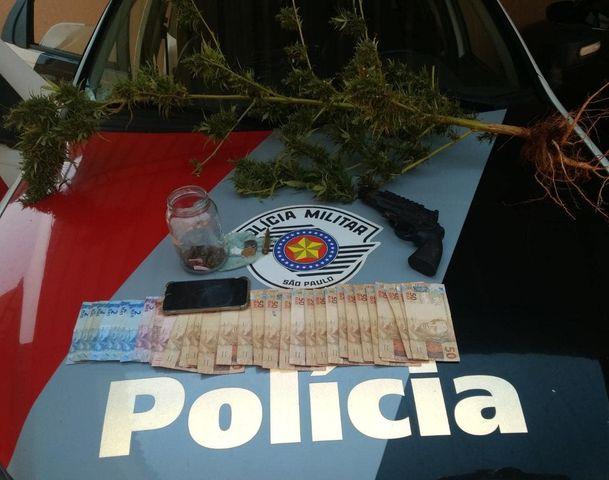 """POLÍCIA MILITAR DE IPAUSSU """"PRENDE"""" INDIVÍDUO POR TRÁFICO DE DROGAS E APREENDE TAMBÉM UM PÉ DE MACONHA"""