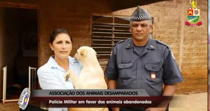 POLÍCIA MILITAR EM FAVOR DOS ANIMAIS DESAMPARADOS