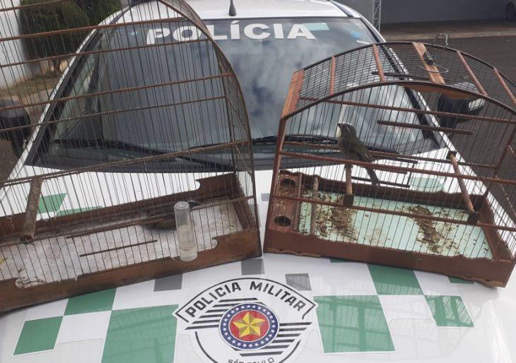 POLÍCIA AMBIENTAL APREENDE DUAS AVES SILVESTRE EM SANTA CRUZ DO RIO PARDO