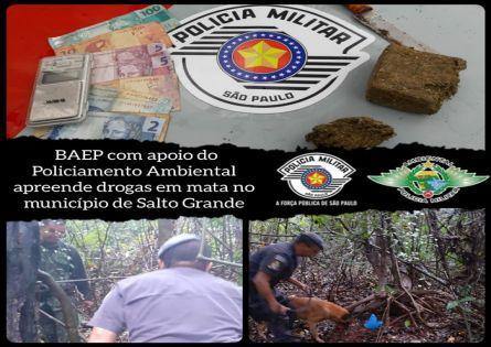 CANIL DO 13° BAEP E POLICIAMENTO AMBIENTAL REALIZAM APREENSÃO DE ENTORPECENTES EM SALTO GRANDE.